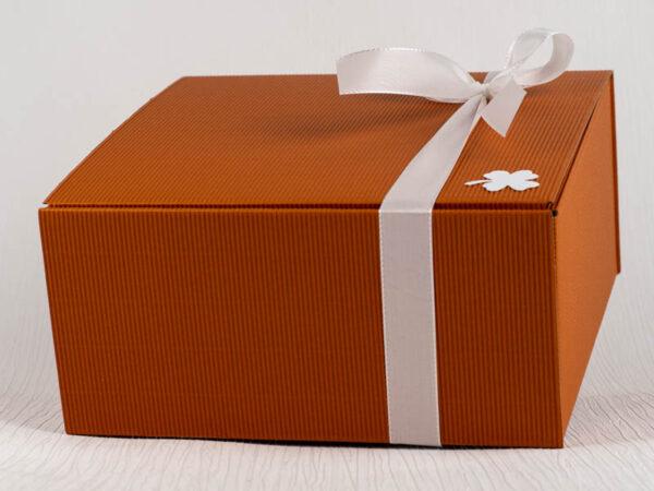 mittlerer orangener Praesentkarton